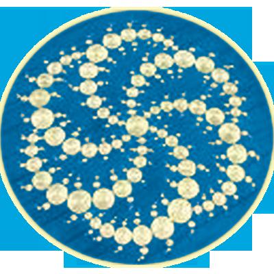 Vortex_crop_circle